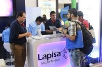 Visitantes al stand Lapisa